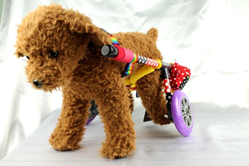 犬用車椅子1