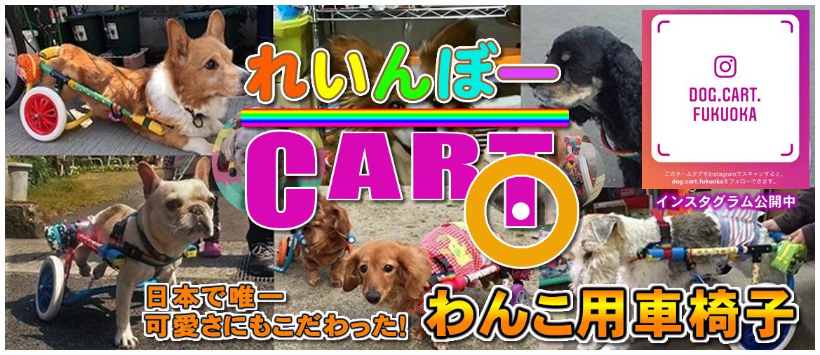 日本一可愛い犬用車椅子