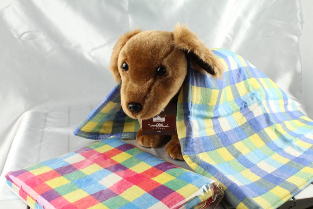 わんこ用毛布