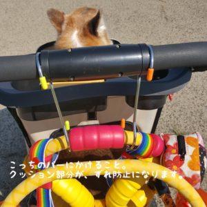 犬の車椅子とカート
