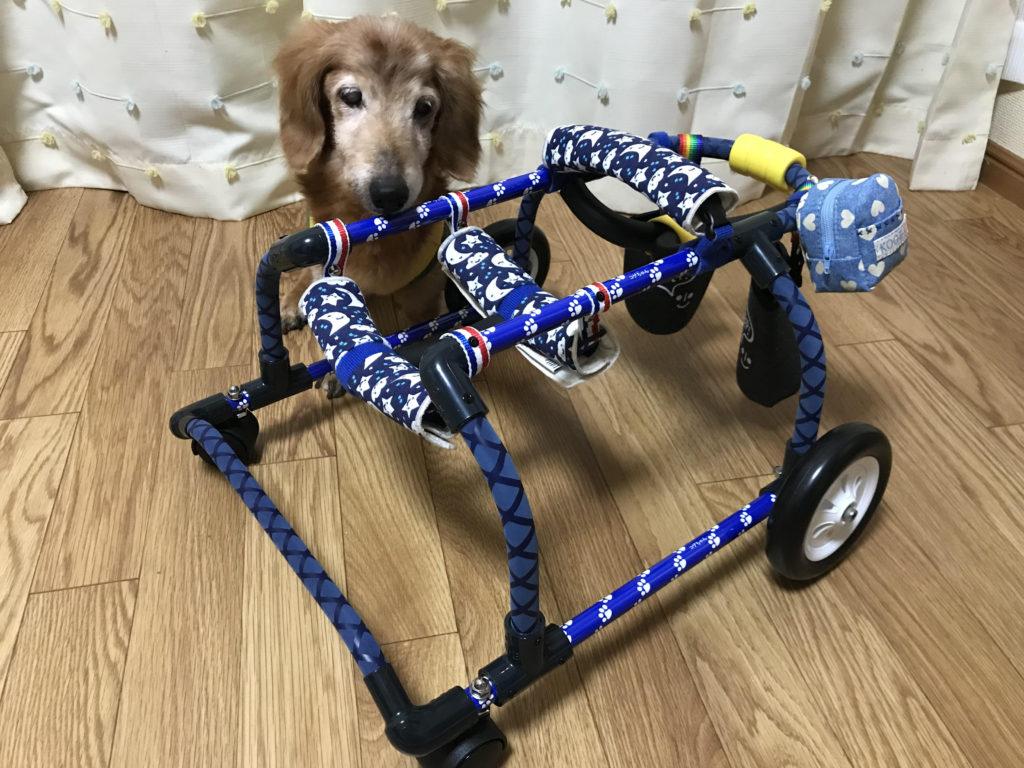 こげちゃんの車椅子