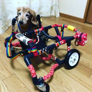セミ4輪車椅子