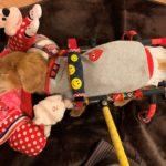 犬の車椅子#53